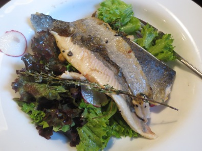Pan seared trout from the Elbe River